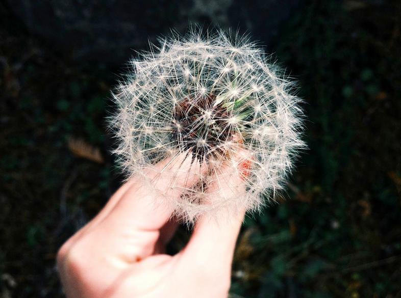 Wieso es ein Segen sein kann, wenn deine Wünsche nicht in Erfüllung gehen2